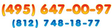 обратный звонок на сайт позвоним