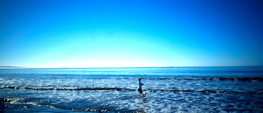 Почему пляжи на полуострове Калифорния самые чистые в Мексике?
